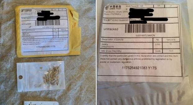 seeds-from-china-maryland.jpg